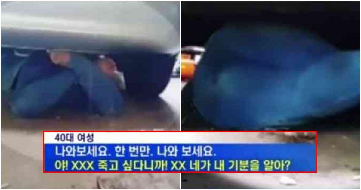 collage 171.png?resize=1200,630 - 이해 안되며 소름돋는 차량 밑으로 기어들어가서 절대 안나오는 여성의 최후