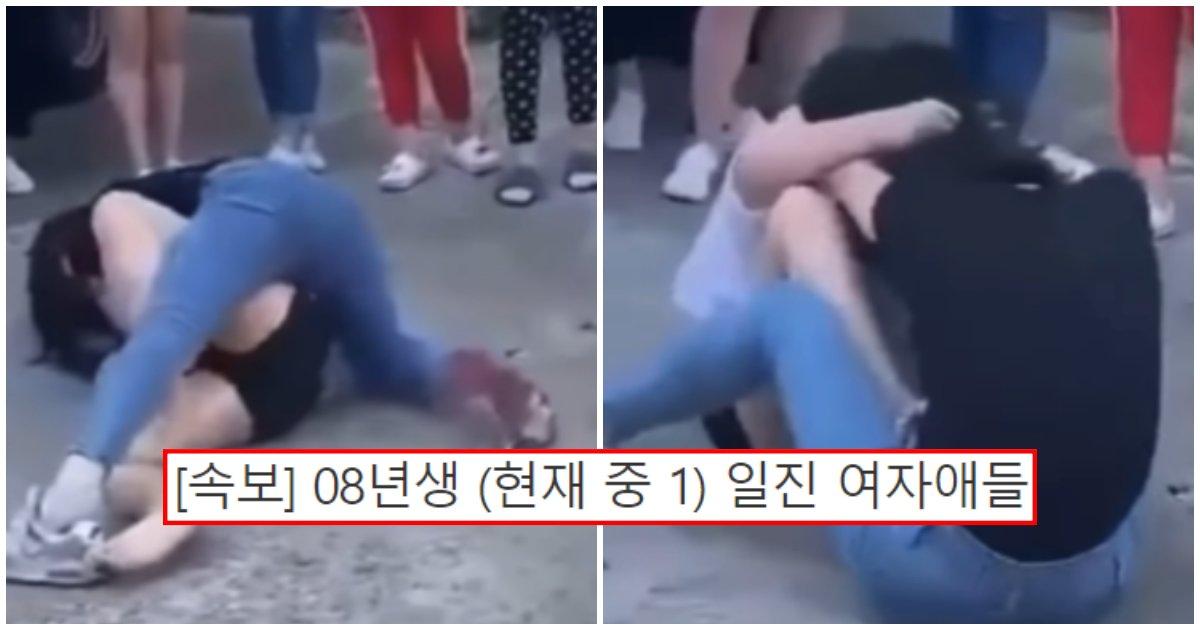 """collage 331.png?resize=412,232 - """"요즘 08년생 싸우면 이럽니다.."""" 여자 08년생 일진 애들끼리 맞짱 뜨면 벌어지는 일 (+영상)"""
