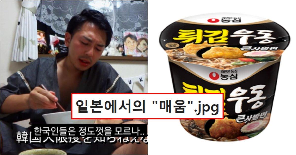 collage 357.png?resize=1200,630 - 한국인들은 절대 이해가 불가능한 일본에서의 한국 제품 매움 순위