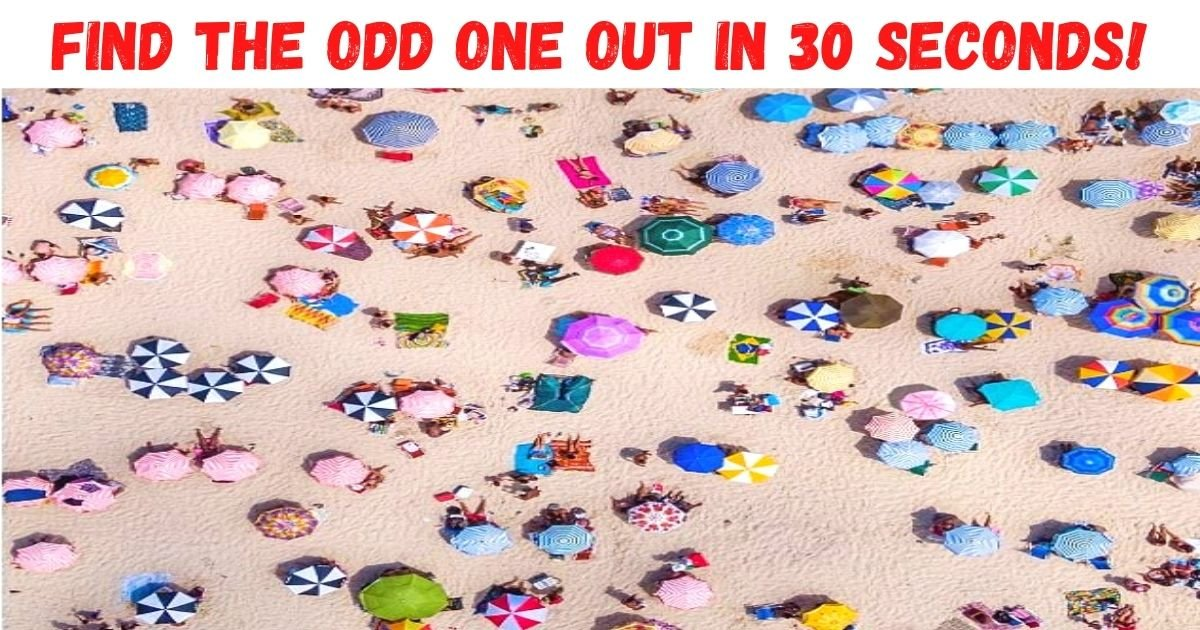 find the odd one out in 30 seconds.jpg?resize=412,232 - How Fast Can You Spot The Hidden Cocktail Umbrella? 9 Out Of 10 People Can't See It!