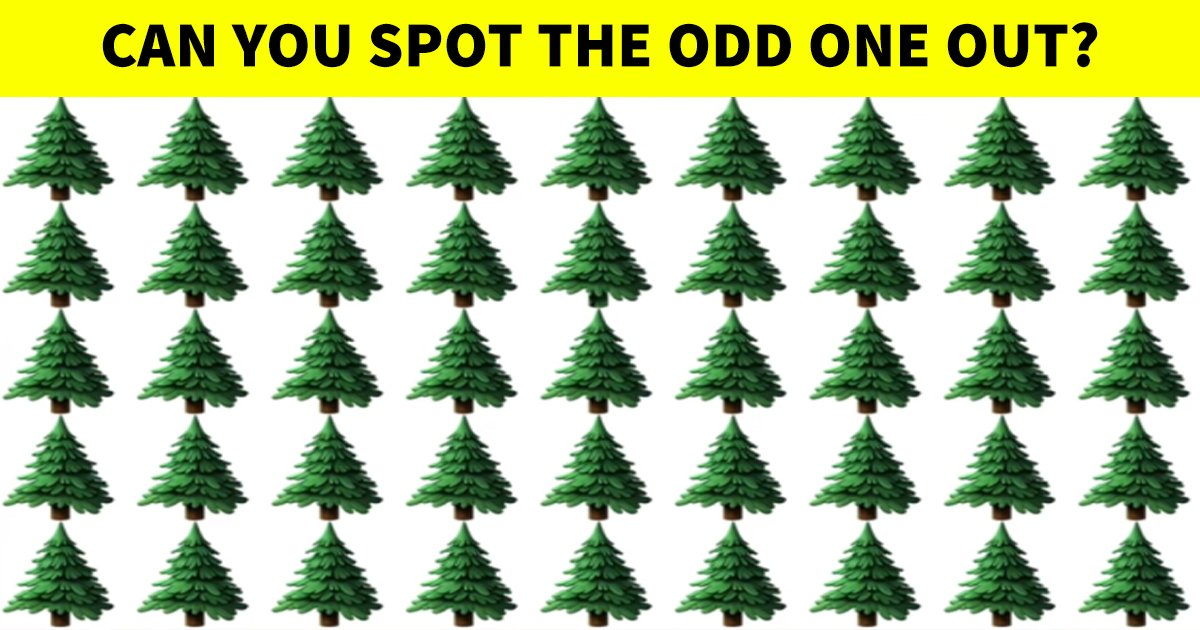 q2.jpg?resize=1200,630 - Viewers Can't Seem To Find The Odd One Out! But Can You?