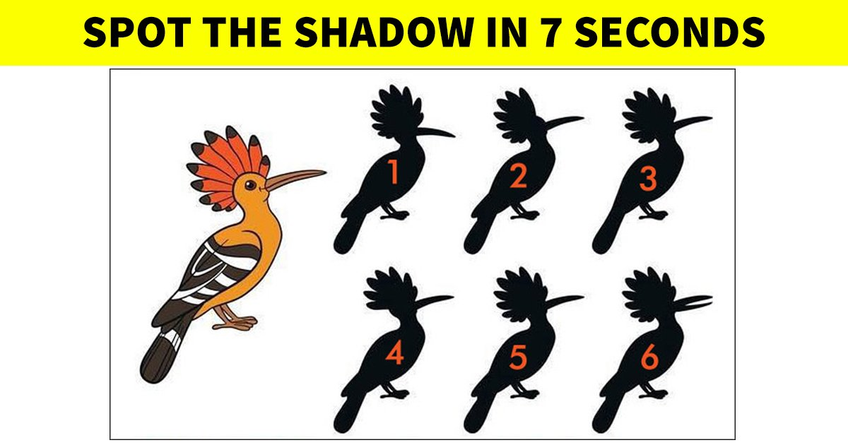 q3 5.jpg?resize=412,232 - 90% Of Viewers Had Trouble Solving This Puzzle! But Can You Figure It Out?