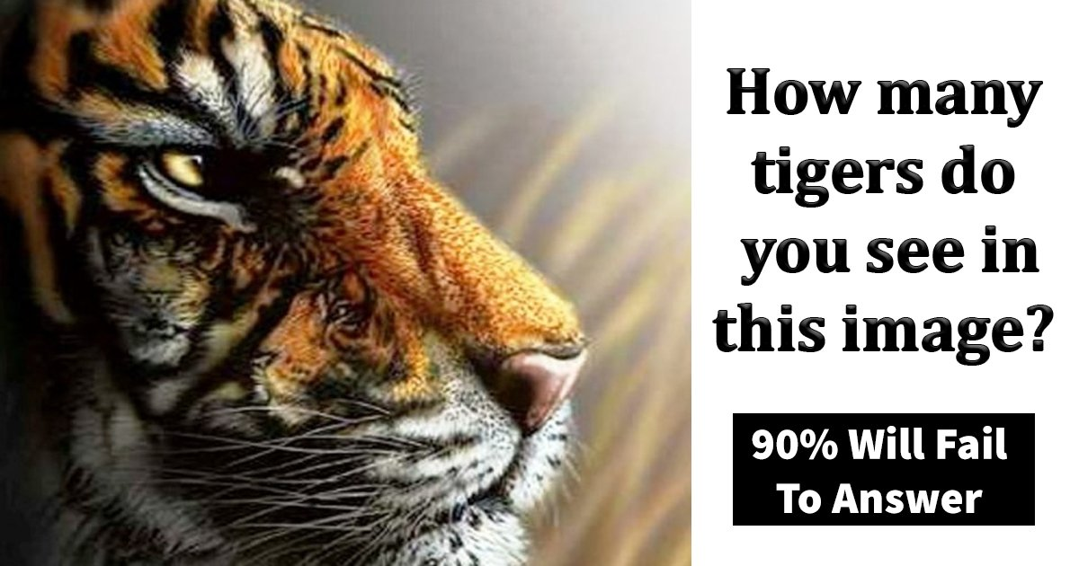 q4 10.jpg?resize=1200,630 - How Many Tigers Can You See In This Picture Puzzle?