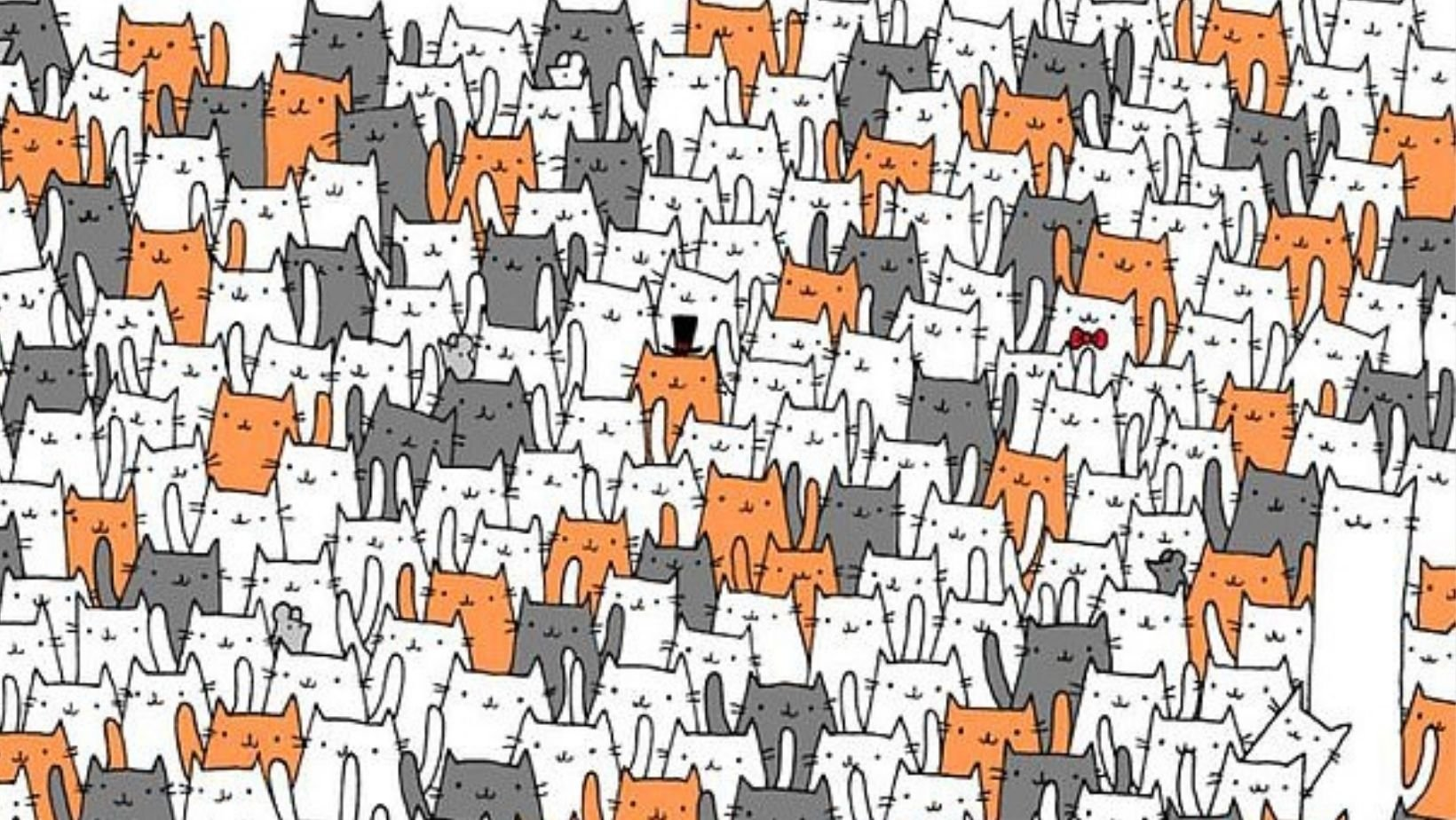 small joys thumbnail 3 3.jpg?resize=412,275 - Can You Find The Hidden Rabbit In Less Than 60 Seconds?