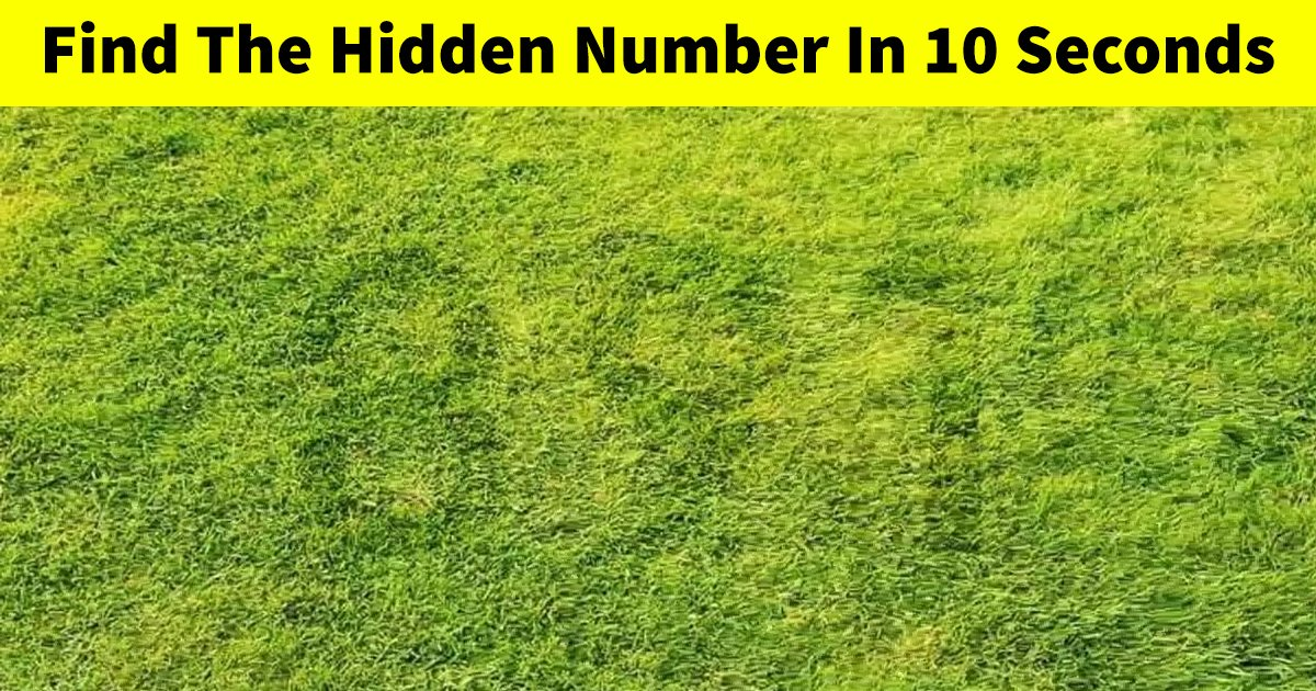 t3 47.jpg?resize=1200,630 - How Fast Can You Find The Hidden Number In This Optical Puzzle?