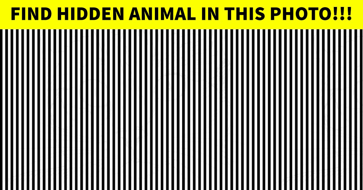 t6 48.jpg?resize=412,232 - This Tricky Observation Test Is Causing A Stir Online! Can You Figure It Out?