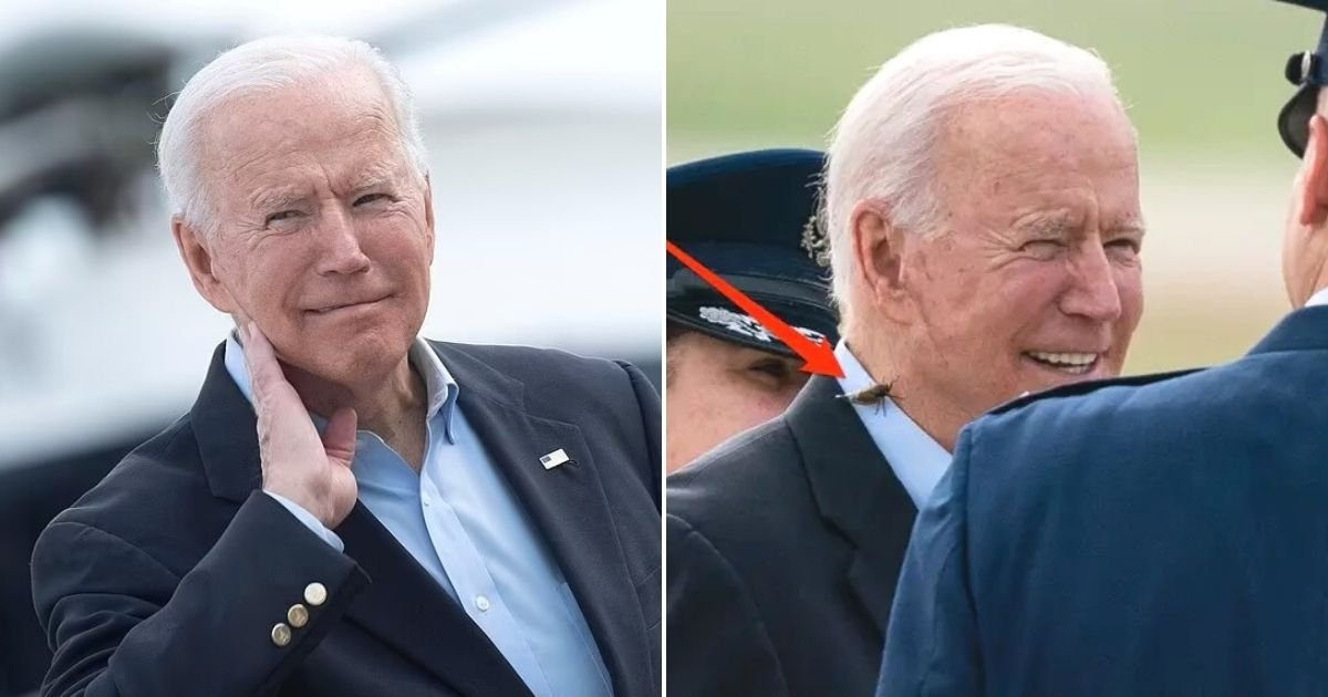 untitled design 13 1.jpg?resize=1200,630 - President Biden Ambushed By A Massive Cicada As He Left For His First Trip Overseas As President