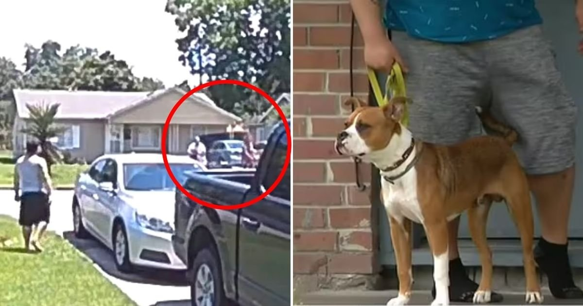 vargas5.jpg?resize=412,275 - Mother Accidentally Shot Her 5-Year-Old SON After Firing On Neighbor's Dog That Wasn't Running Or Barking At Them