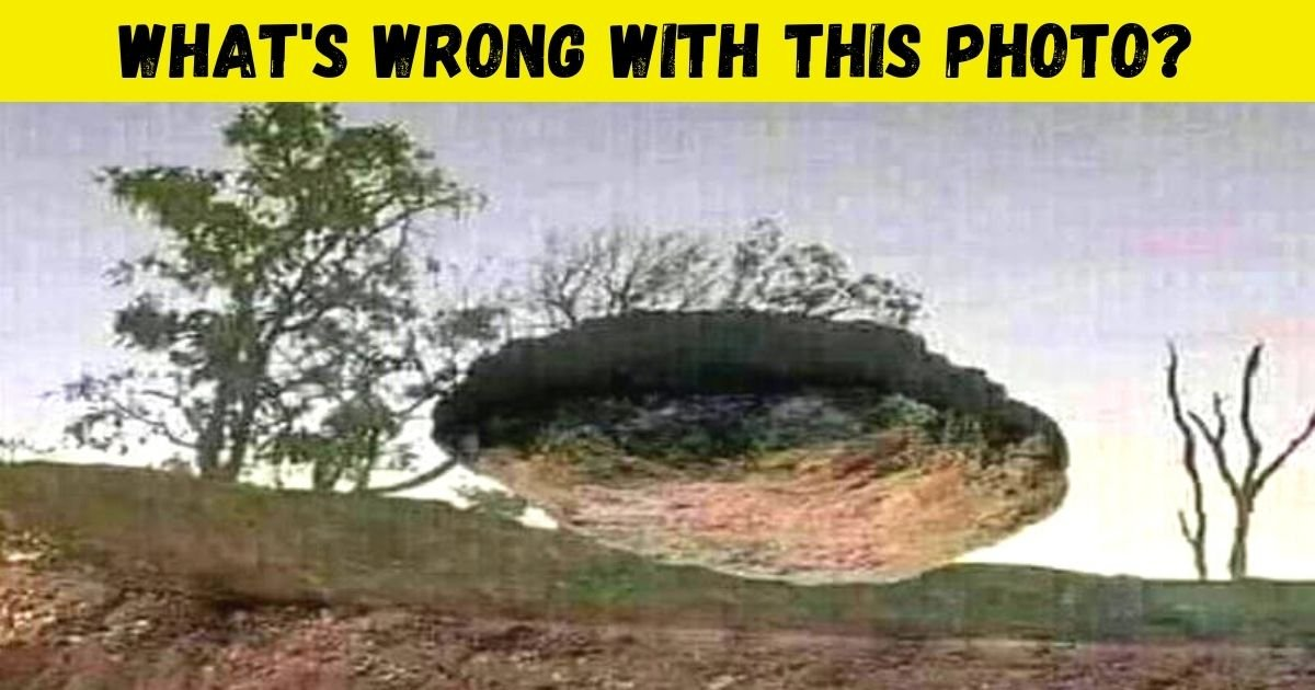 whats wrong with this photo.jpg?resize=1200,630 - This Is A REAL Photo, But Most People Can't Figure Out What's Wrong! Can You?