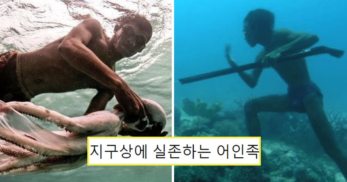 "3 31.jpg?resize=1200,630 - ""바다에서 살아요""... 동남아 바닷 속에서 '어인족' 발견됐다"