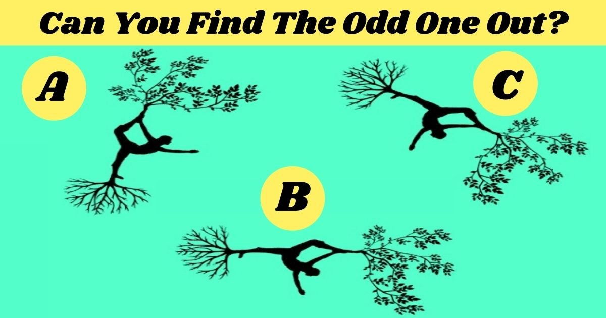 can you find the odd one out.jpg?resize=1200,630 - 90% Of Viewers Couldn't Spot The Odd One Out! But Can You?