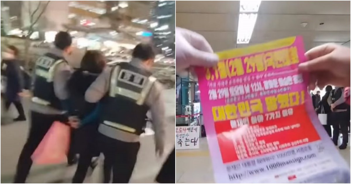 collage 212.png?resize=1200,630 - 잠실역에서 '문재인 하야' 전단지 뿌렸다는 이유로 체포되어 경찰서 간 여성