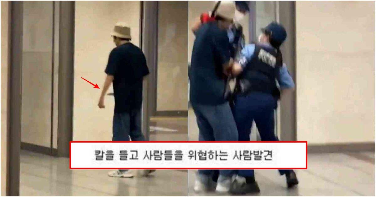 collage 247.png?resize=1200,630 - 현재 일본에선 한국인들이 왜 여경을 칭찬하고 있는지 모르겠다는 어제자 일본 사건 수준