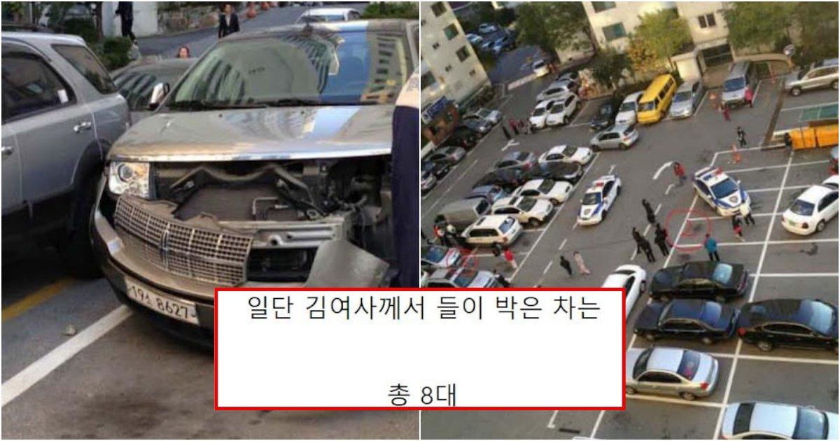 collage 493.png?resize=1200,630 - 대한민국에서 일어난 김여사 사건 중 가장 역대급으로 어이없고 말도 안 나온다는 사건