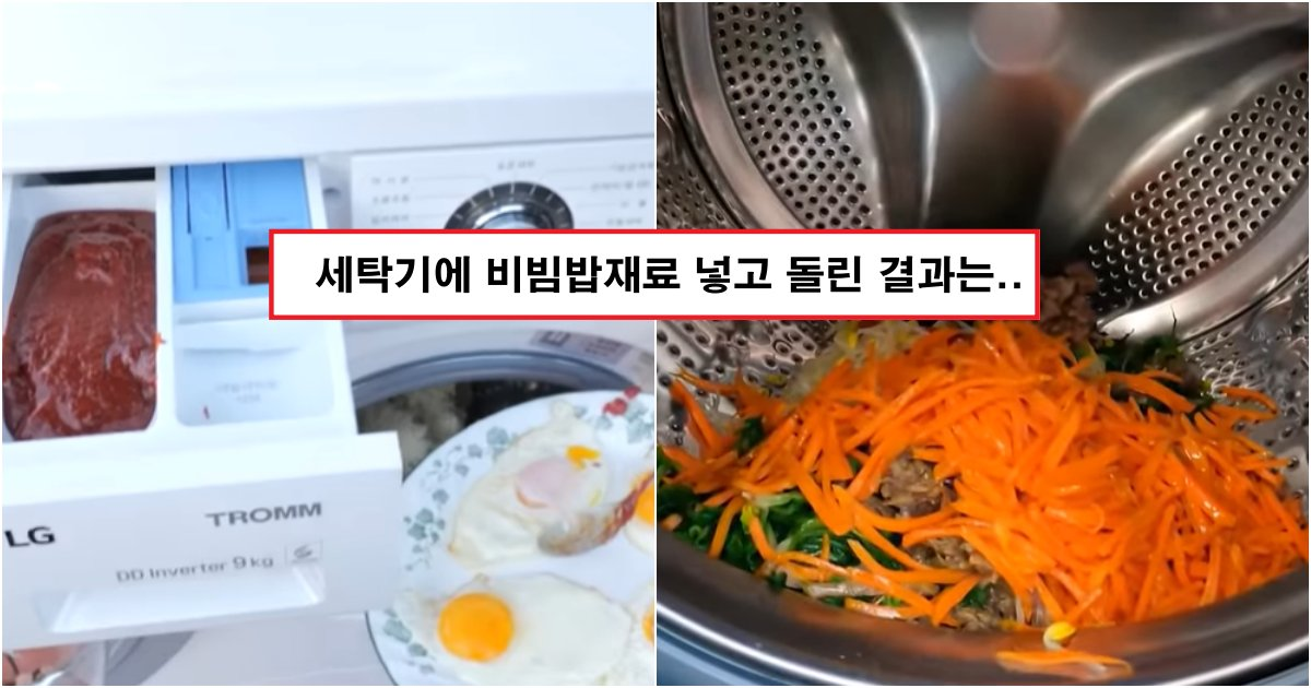 collage 560.png?resize=1200,630 - 드럼세탁기에, 비빔밥 재료를 다 넣고 돌린 남자의 최후(+사진)