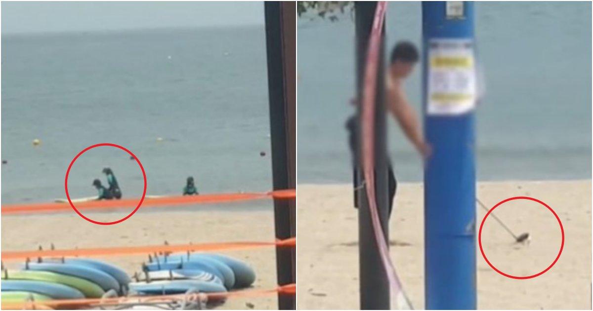 "collage 773.png?resize=412,232 - ""울산 진하 해수욕장 XXX 골프남"" 바다에 피서객이 있는 채로, 골프 연습한 남성(+사진)"