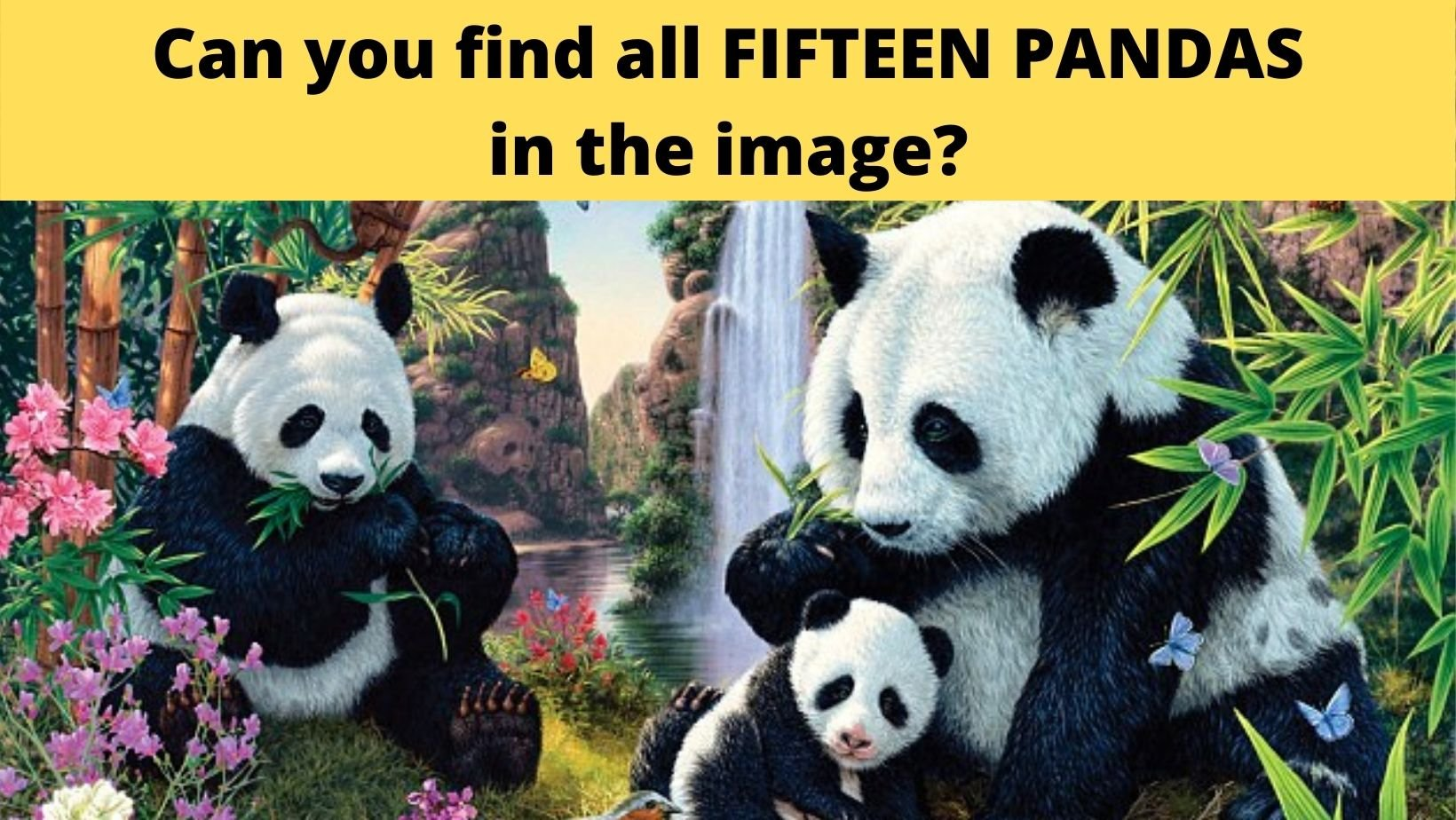 cover 22.jpg?resize=1200,630 - There Are FIFTEEN PANDAS In This Photo, Can You Find Them All?