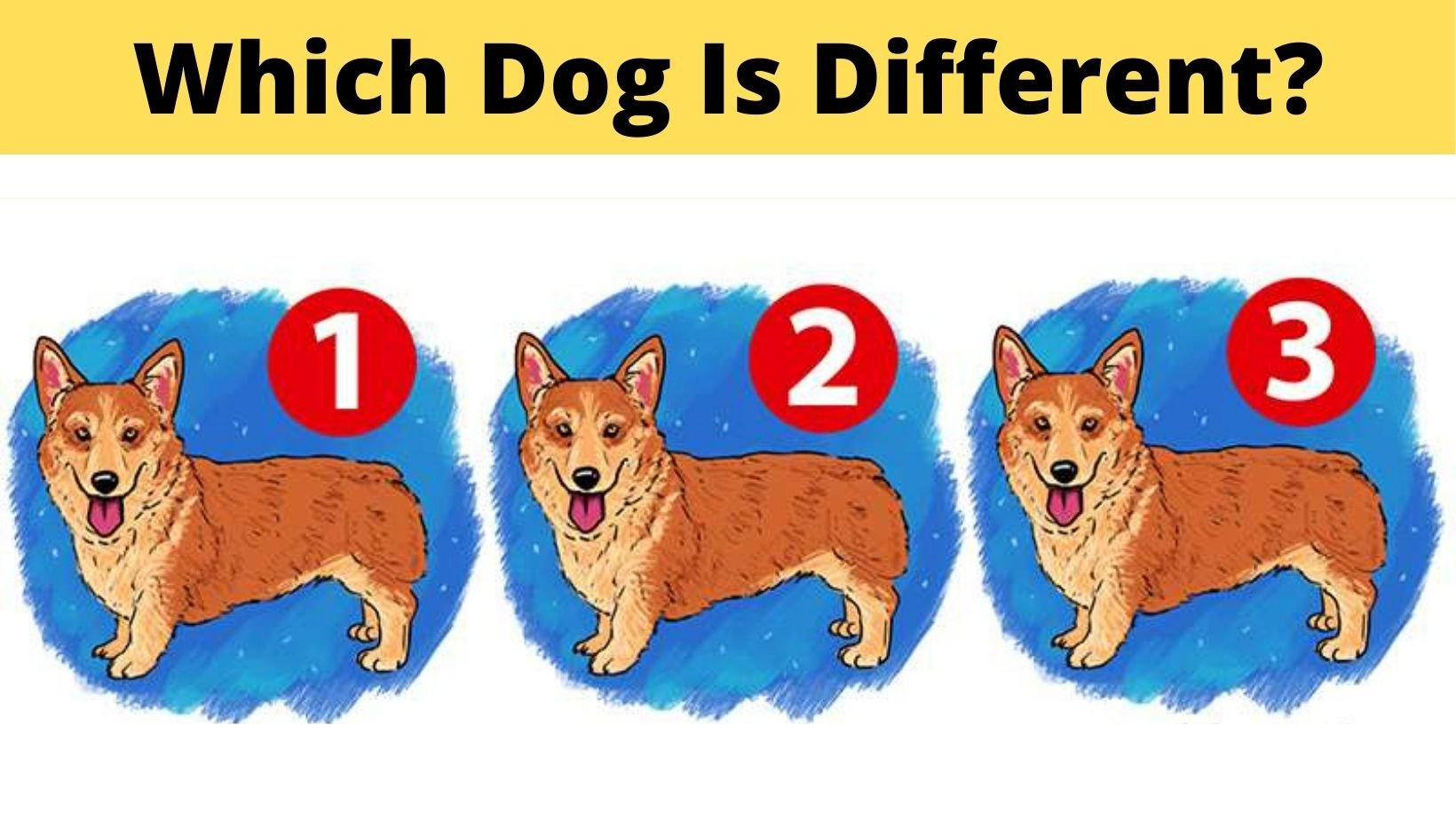 cover 26.jpg?resize=412,275 - Which Dog Is Different From The Rest?