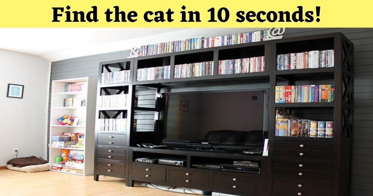 find the cat in 10 seconds 1 1.jpg?resize=1200,630 - Almost No One Can See The Hidden Cat In This Photo! But Can You?