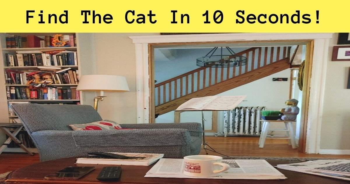 find the cat in 10 seconds.jpg?resize=412,232 - How Fast Can You Spot The Hidden Cat? 90% Of Viewers Couldn't Find It!