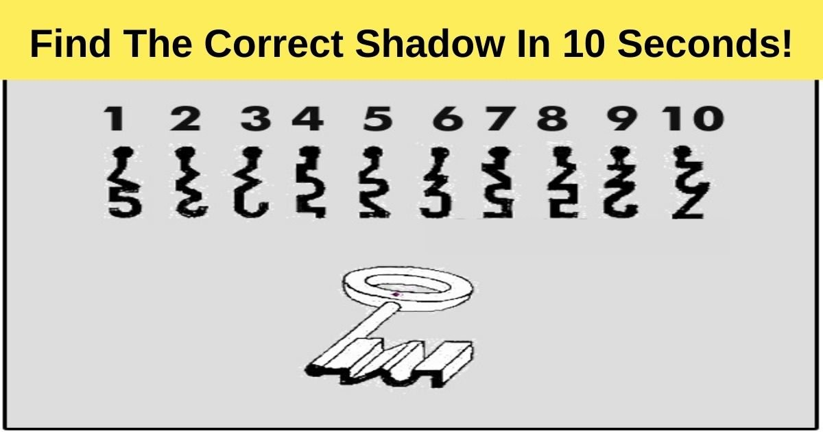 find the correct shadow in 10 seconds.jpg?resize=412,232 - 90% Of Viewers Failed To Choose The Correct Shadow! But Can You Pass The Test?