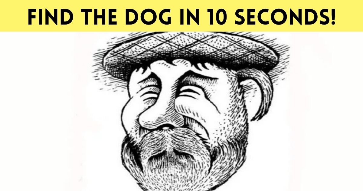 find the dog in 10 seconds.jpg?resize=1200,630 - 90% Of People Can't See The Dog In This Picture! But Can You?