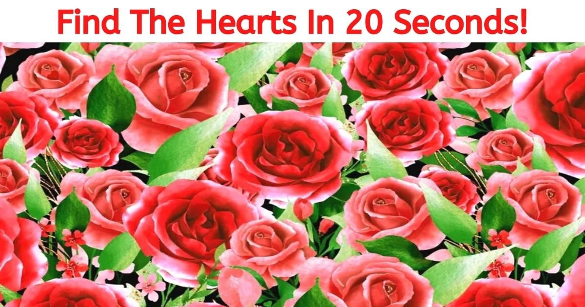 find the hearts in 20 seconds.jpg?resize=412,232 - How Fast Can You Find The Hearts Hiding Among The Roses? 99% Of Viewers Can't See Them All!