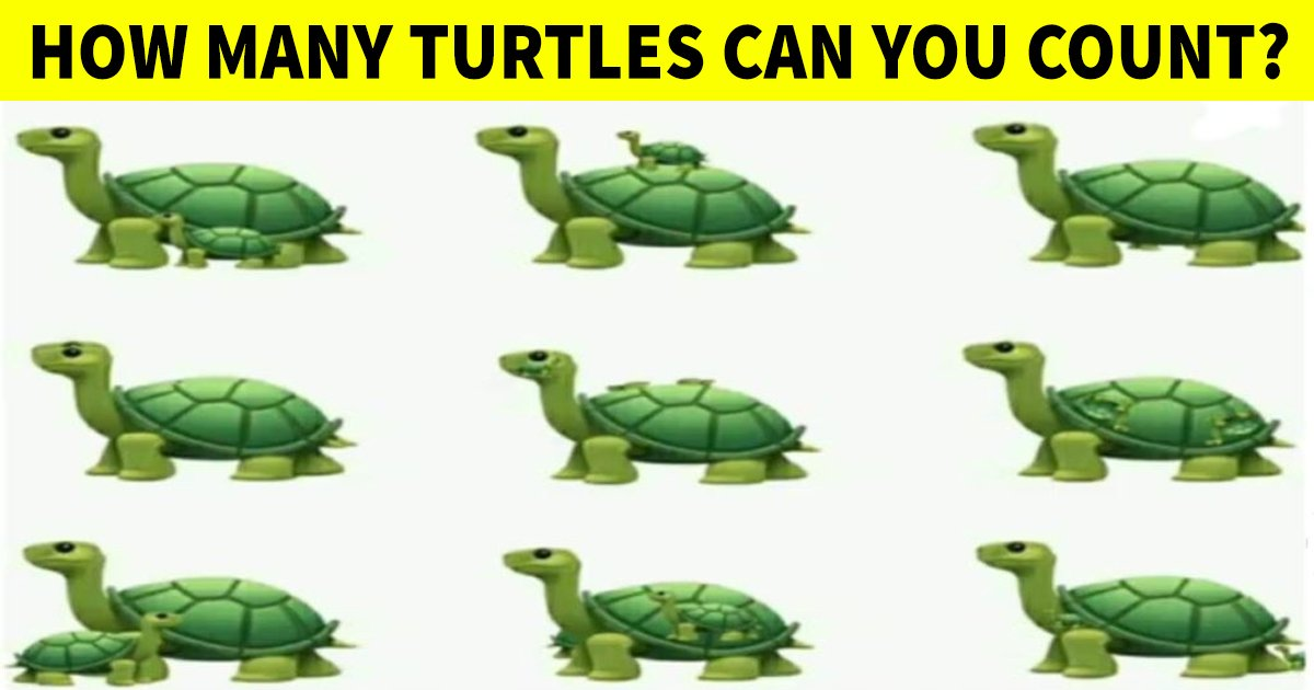 q2 31.jpg?resize=1200,630 - How Quick Can You Count The Number Of Turtles In This Tricky Graphic?