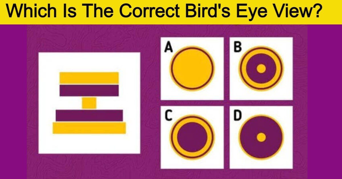 quiz1 thumbnail 1.jpg?resize=412,275 - Only The Smartest 5% Of People Can Work Out What This Photo's Birds Eye View Is
