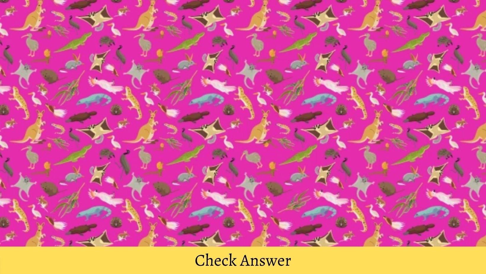 small joys thumbnail 4 3.jpg?resize=1200,630 - VISUAL TEST: Can You Spot The KOALA In Less Than A Minute?