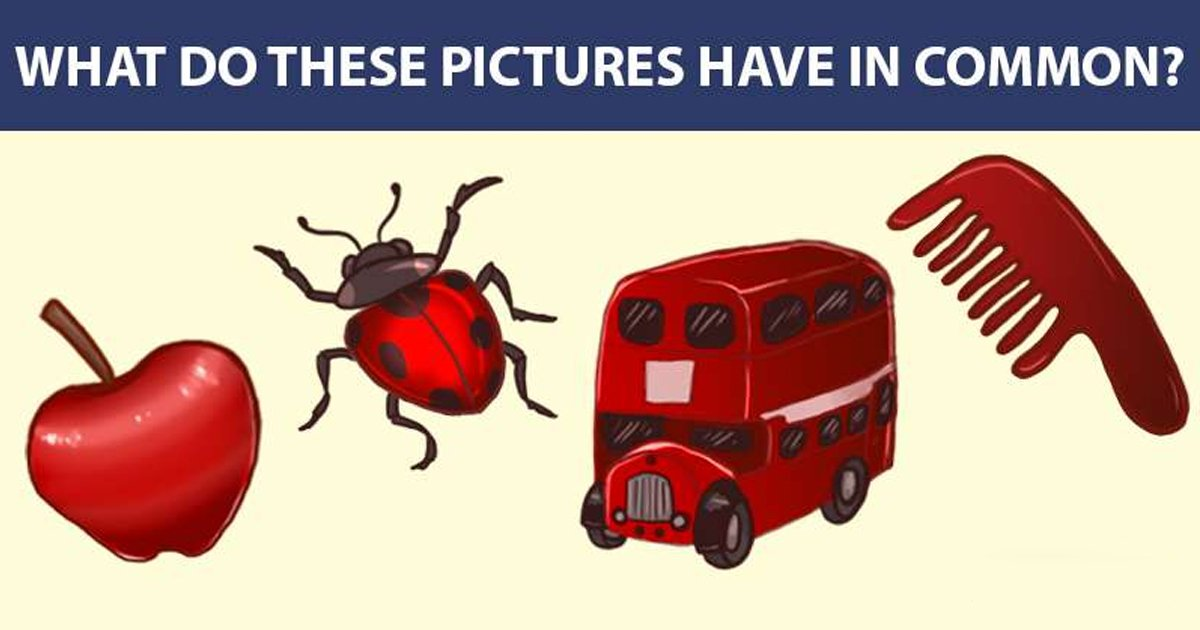 t2 64.jpg?resize=1200,630 - Many Viewers Had Trouble Solving This Picture Puzzle! Can You Find The Similarity?