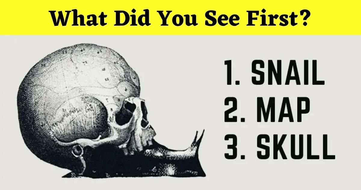 what did you see first.jpg?resize=1200,630 - Did You See The Skull, The Snail, Or The Map First?