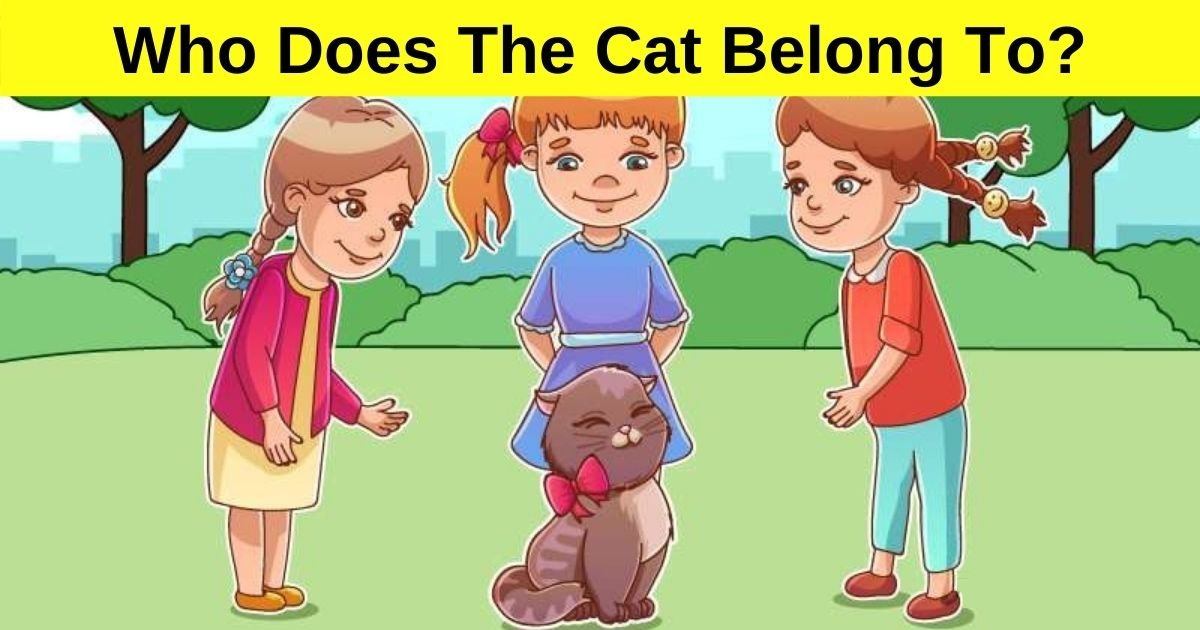 who does the cat belong to.jpg?resize=412,232 - 85% Of Viewers Couldn't Figure Out Who The Cat Belongs To! But Can You?