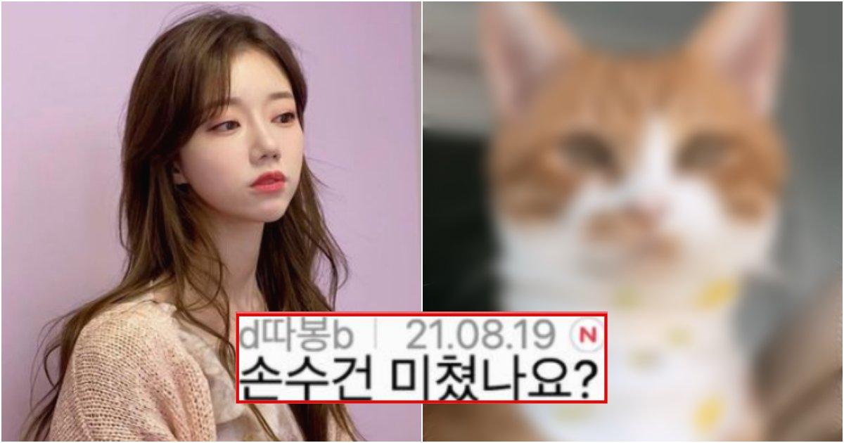 collage 581.png?resize=1200,630 - 지금 제대로 난리난 환승연애에 나오는 여자 출연자가 키우는 고양이