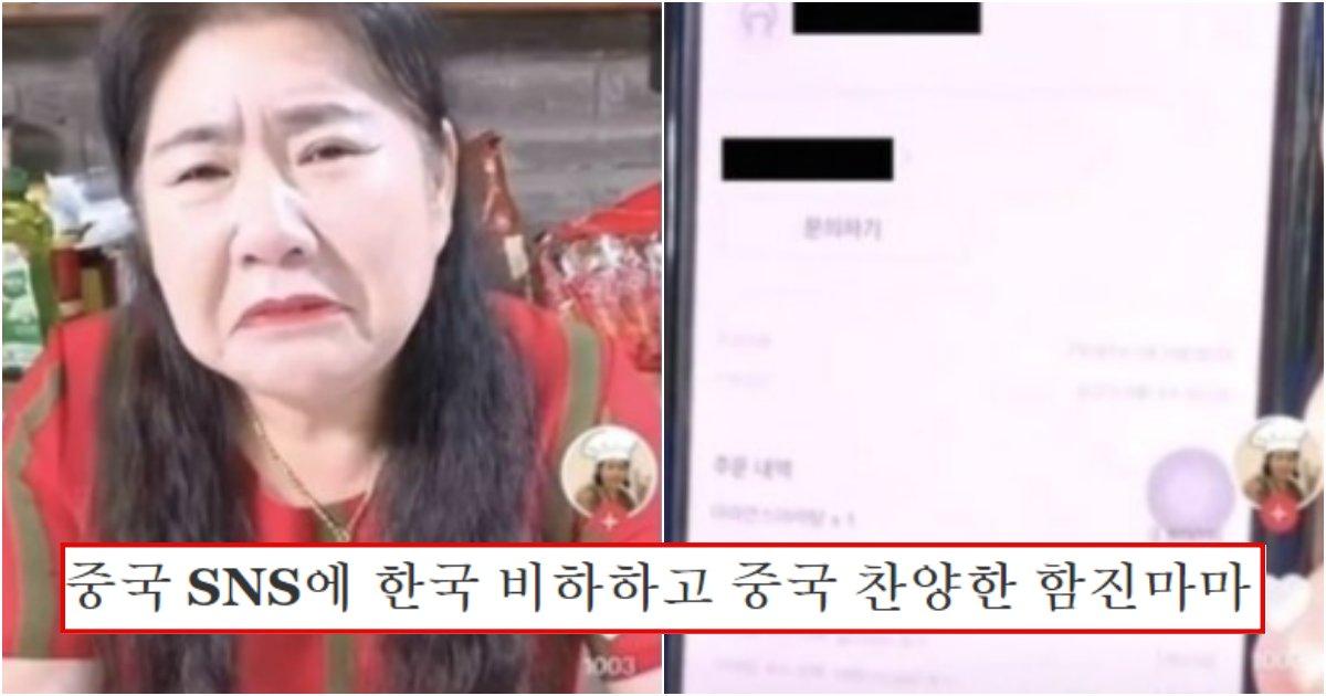 collage 587.png?resize=1200,630 - 한국에서 지내면서 중국 SNS에 한국에 대해 비하하다가 제대로 싹 다 걸린 함진마마