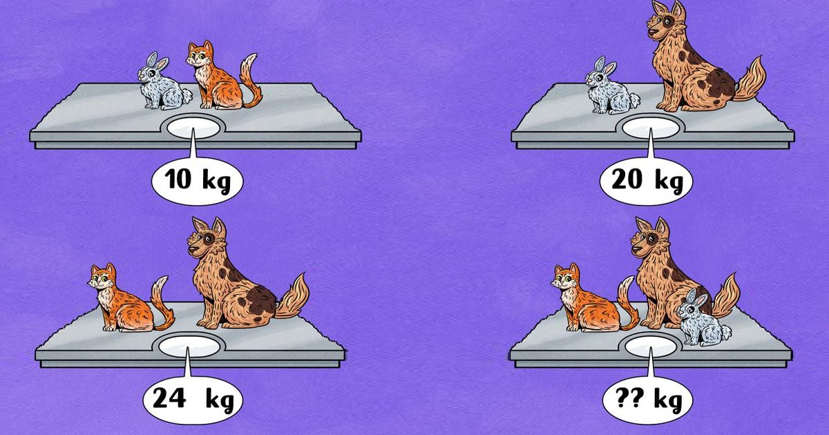 q6 20.jpg?resize=1200,630 - Can You Crack The Code And Figure Out The Total Weight Shown In The Last Image?