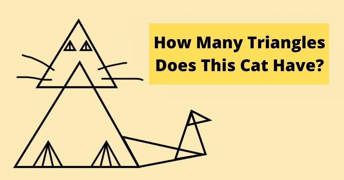 smalljoys 8.jpg?resize=1200,630 - Can You Guess The CORRECT NUMBER Of Triangles In The Photo?
