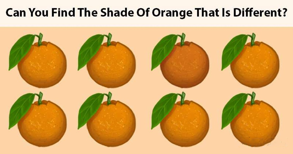 t2 83.jpg?resize=1200,630 - Let's See If You Can Train Your Brain To Answer This Tricky Riddle!
