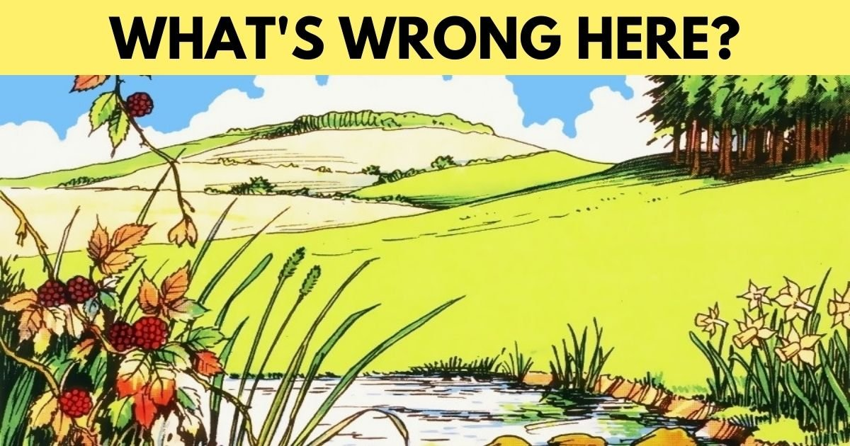 whats wrong here.jpg?resize=412,232 - There Is An Error Hiding In This Picture - How Fast Can You Find It?