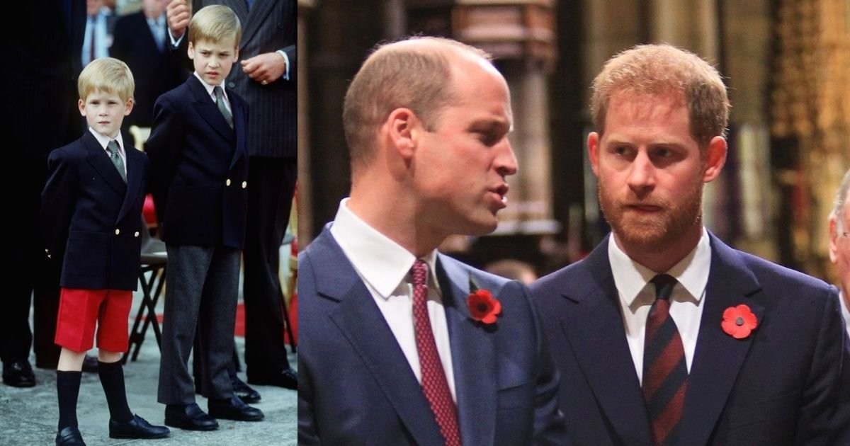 1 35.jpg?resize=412,275 - Harry's Sinister Comment To His Brother William When He Was 4-Years-Old Could Have Eerily Predicted The Brother's Royal Rift That Shook The World This Year