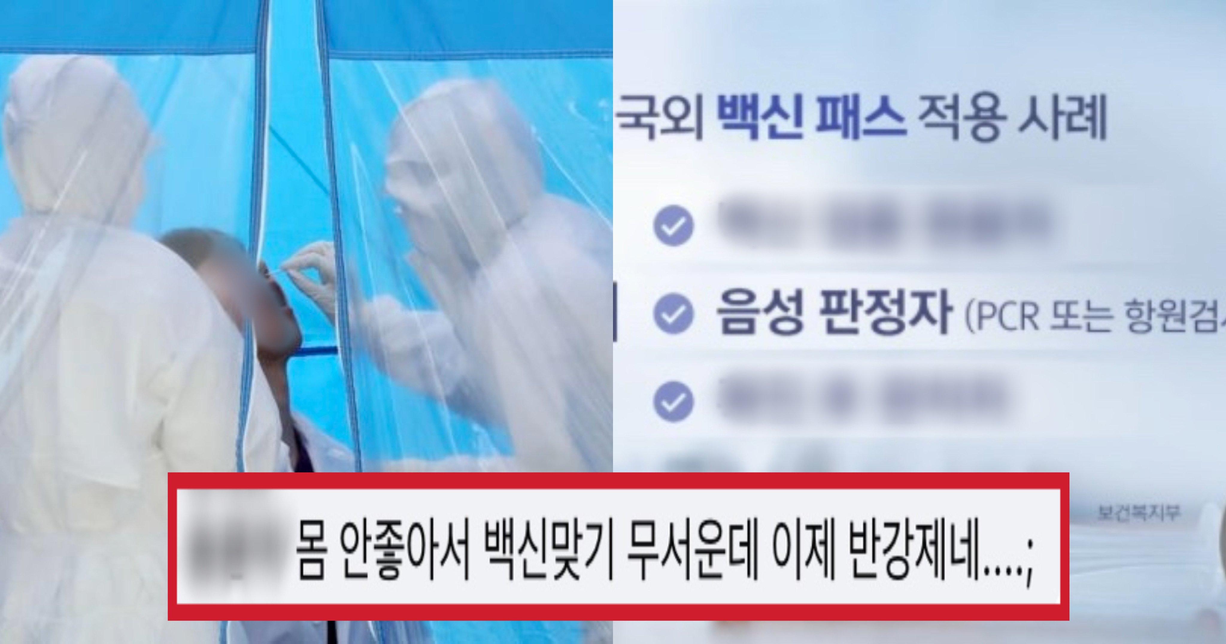 "2ffb722b e5bb 4204 8f99 6c86b3712441.jpeg?resize=412,232 - ""이 사람들은 백신패스입니다"" 방금 MBC 뉴스에 나온 국내 '백신패스' 검토 논의"