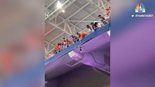 Watch-Miami-Fans-Using-American-Flag-To-Catch-Falling-Cat-at-Hard-Rock-Stadium-0-18-screenshot