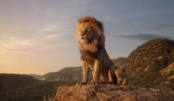 영화 '라이온 킹', 'CG'로 재탄생한 아기사자의 치명적인 귀여움 - 백세시대