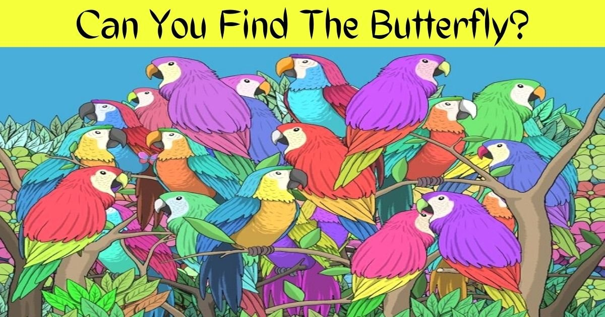 can you find the butterfly.jpg?resize=1200,630 - 90% Of People Couldn't See The BUTTERFLY Hiding Among Colorful Parrots! But Can You?