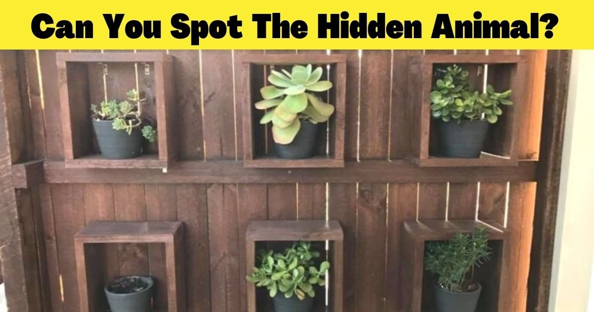 can you spot the hidden animal.jpg?resize=1200,630 - There Is A Giant Animal Somewhere In This Photo – But Can You Find It In Less Than 30 Seconds?