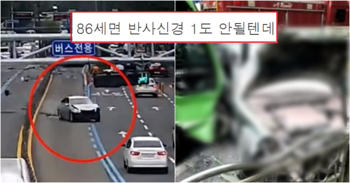 collage 349.png?resize=1200,630 - 실시간 유튜브에 올라와서 난리 난 '86세' 여성 운전자 교통사고(+영상)