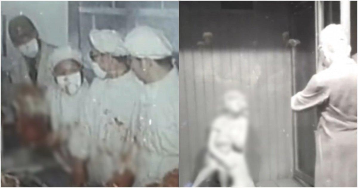 collage 37.jpg?resize=412,232 - 일본 '731 마루타 부대'의 인류역사상 잔혹하고 최악의 실험 1위로 뽑히는 '모성애 실험' (+사진)