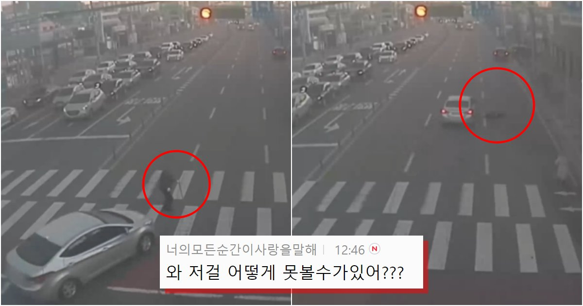 collage 43.png?resize=1200,630 - 최근에 있었던 한문철tv에 나왔던 사고 중 가장 안타까운 노인 횡단보도 사고  (영상)
