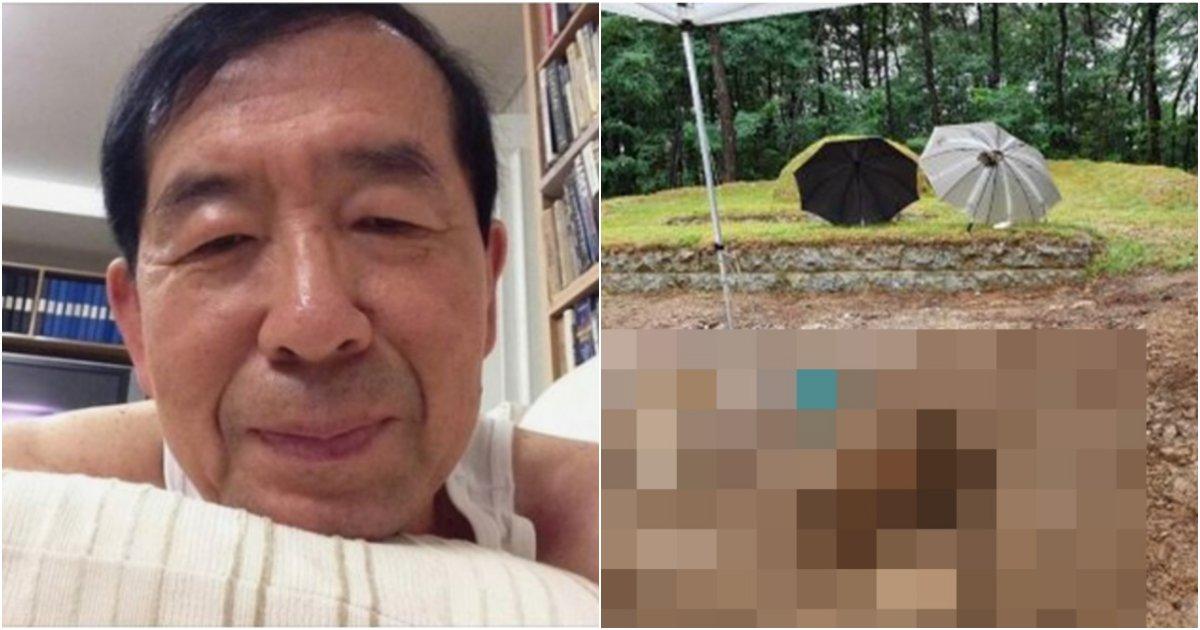collage 71.png?resize=1200,630 - 고(故) 박원순 전 서울시장의 묘소가 전부 파인채 발견됐다