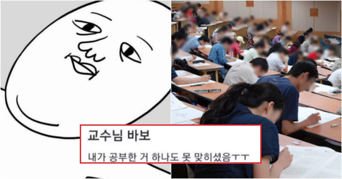 collage 97.png?resize=1200,630 - 시험기간에, 드디어 정신 줄 놔버린 대학생들의 레전드 모음(+사진)